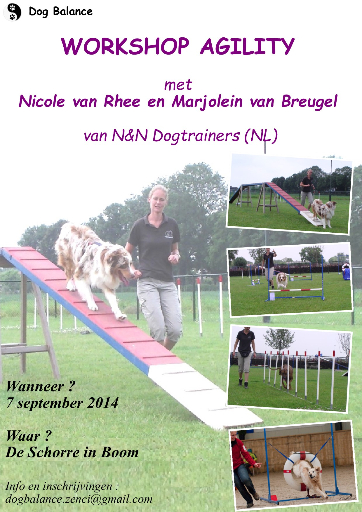Workshop Agility | Dog Balance
